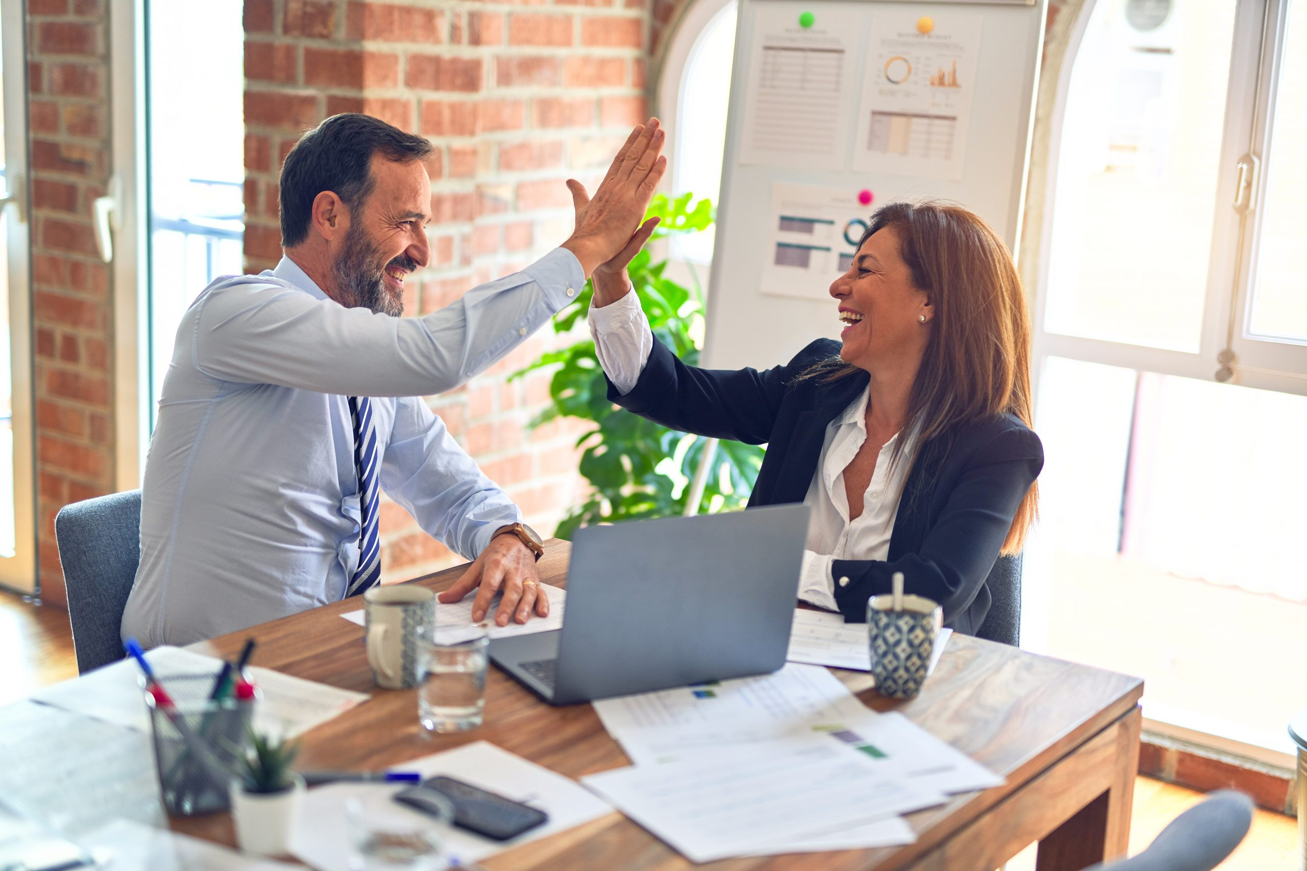 Effective Project Management as a Critical Success Factor